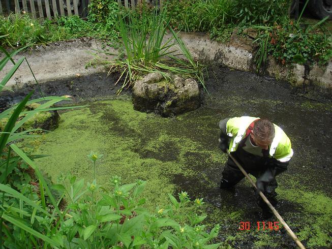 Pond work photos friends of highlands gardens for Garden pond waders